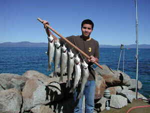 An Accommodation Tahoe guest displays his catch of the day taken from the Lake Tahoe