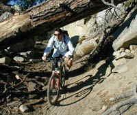 Lake Tahoe biking trails offer a range of technical difficulties.  Here a Accommodation Tahoe owner avoids a fallen tree on a Tahoe rim trail.